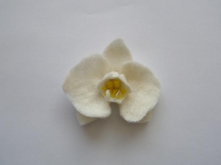 sagė orchidėja