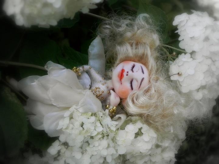 Ramunėlių pievelės fėja