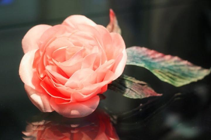 Šilko rožė