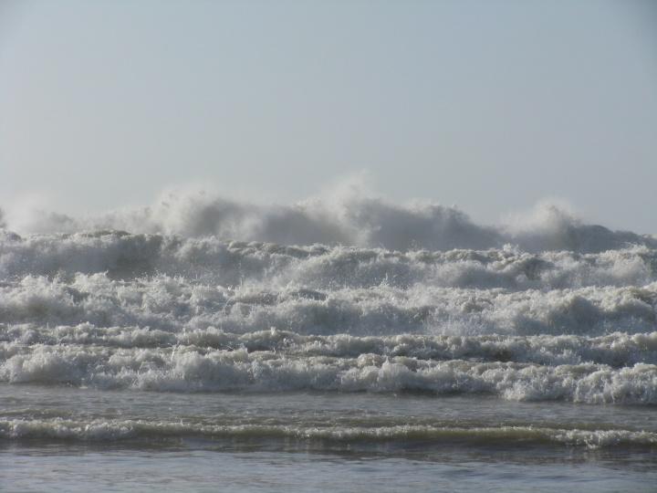 "veltos šlepetės ""bangų mūša"""