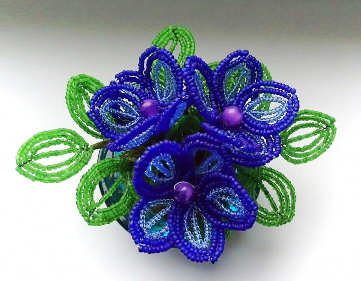 Mėlynų žiedų gėlės