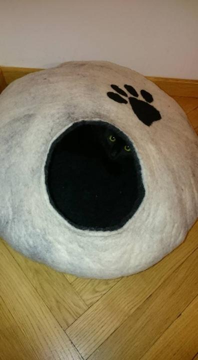 Namukas katinėliui