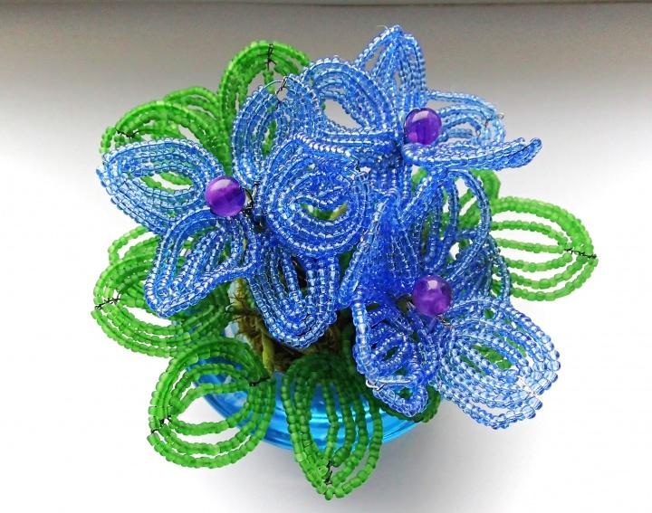 Žydros gėlės