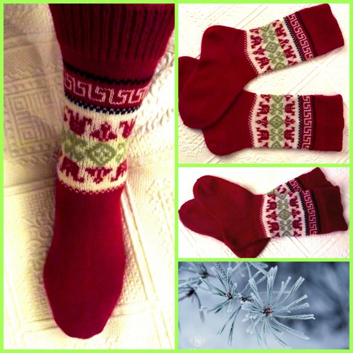 Kojinės - Tulpės žiemą