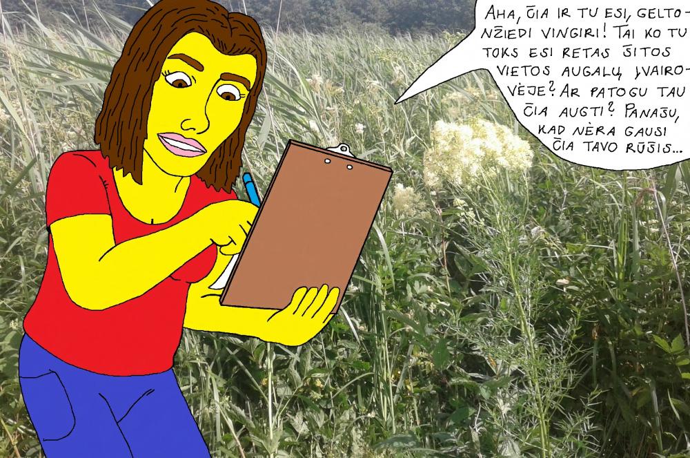 Botanikė Dorota Papyvesio slėnio nendryne surado įdomų augalą