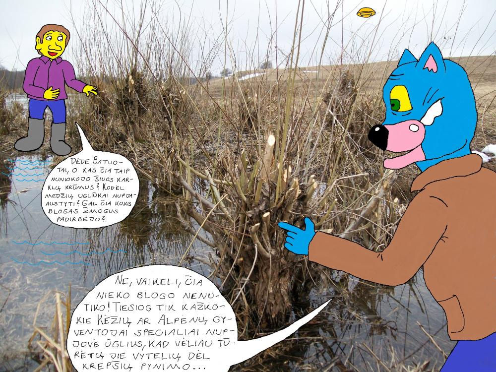 Polaidžio vandens apsemtame Papyvesio slėnyje 2