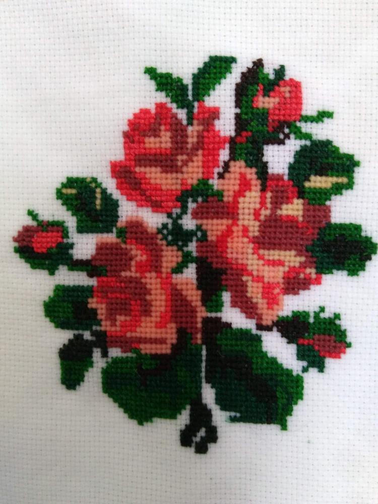 Raud. rožės