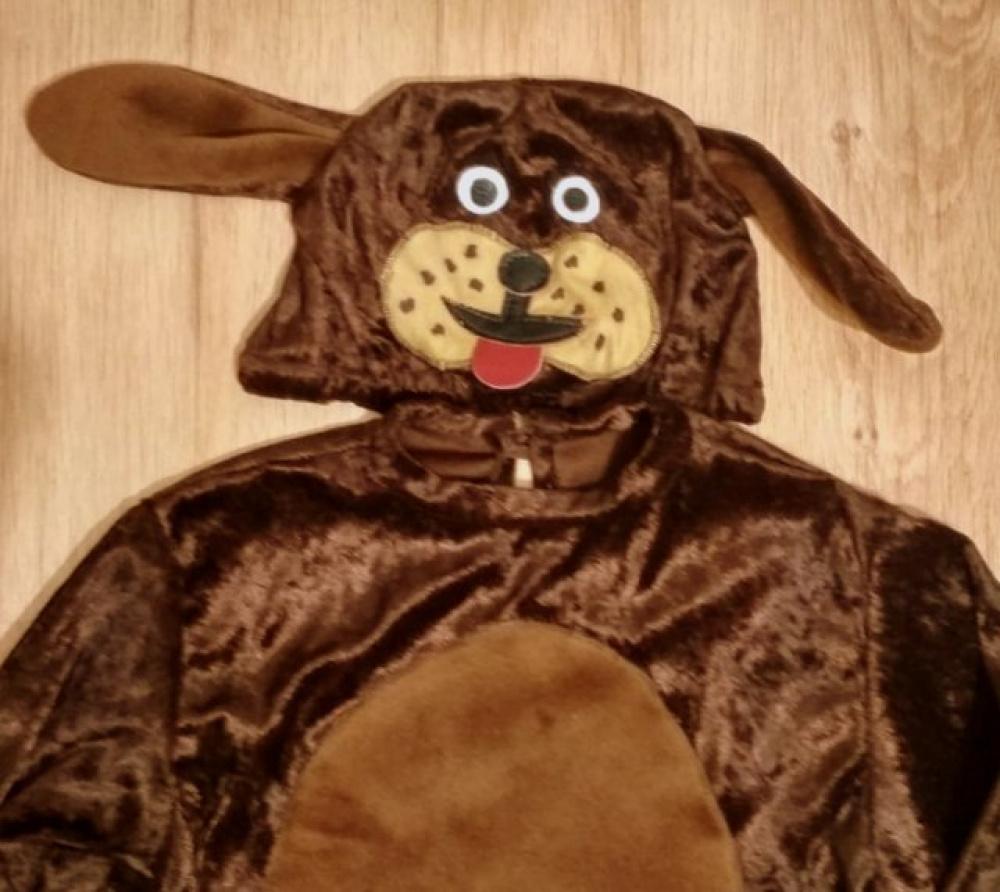 Šuniuko, šuns kostiumas