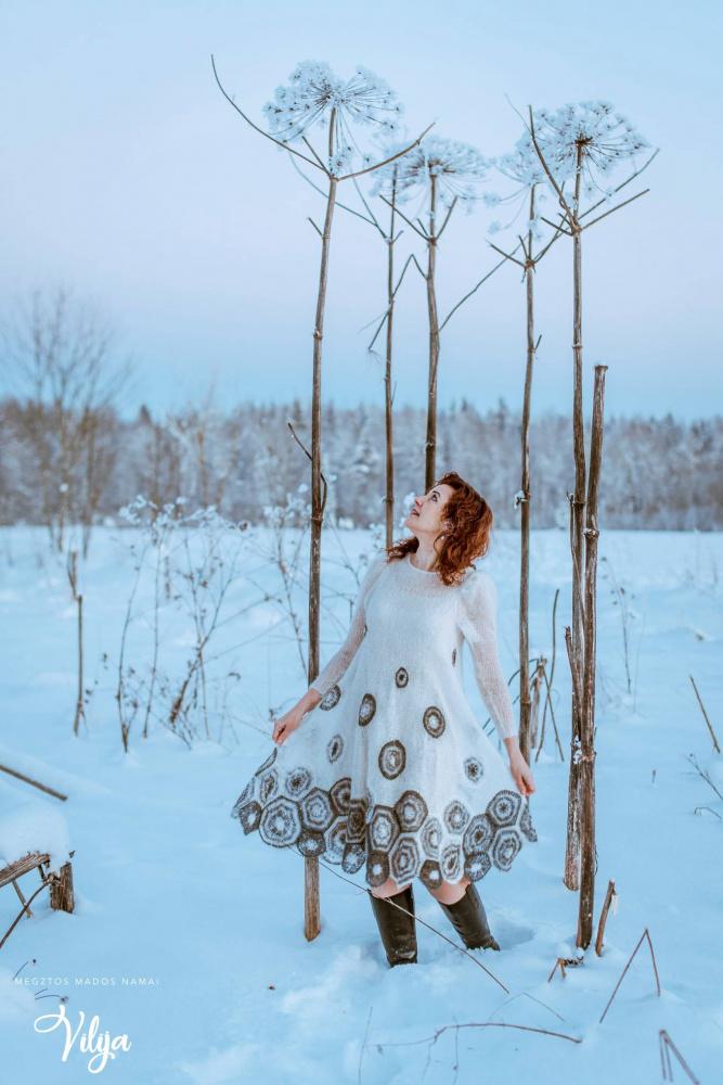 Žiemos harmonija