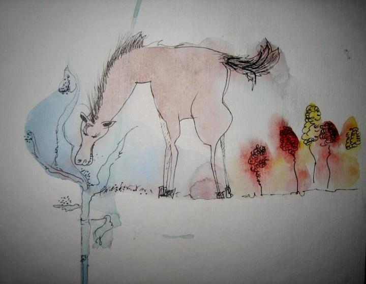 Arkliuko sapnai