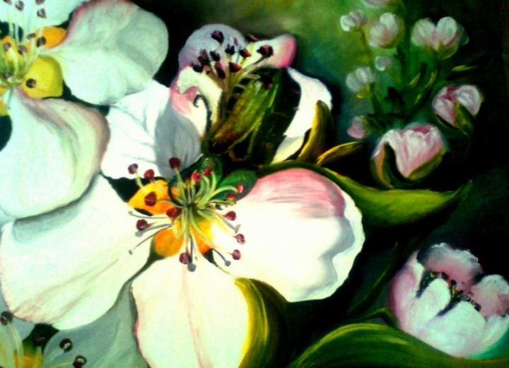 Pavasariniai žiedlapiai