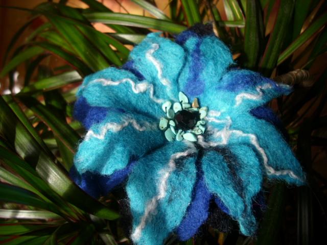 Mėlyna bacila ;)