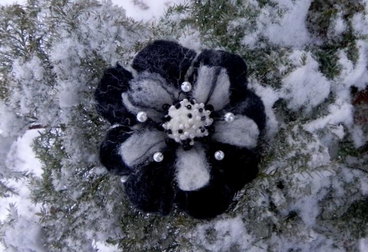 Svaja sniege
