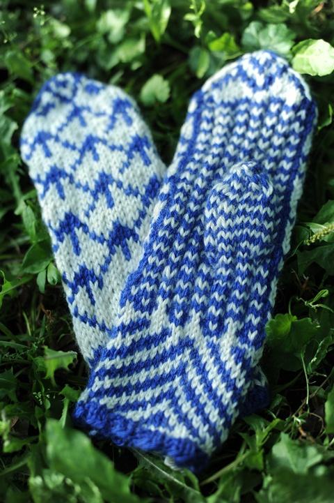 Mėlynų raštų pirštinaitės