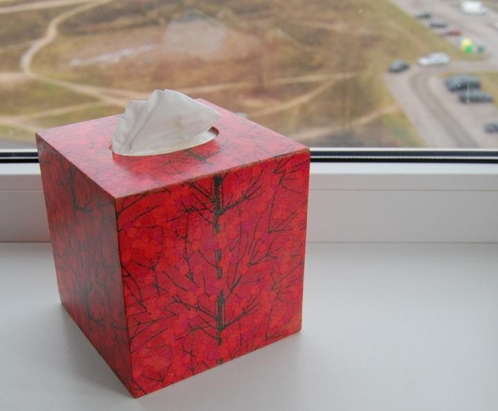 Dėžutė nosinaitėms